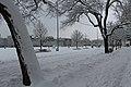Geneve Sous la neige - 2013 - panoramio (15).jpg