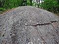 Glaciated knob of gneiss (Proterozoic; Port Leyden, western Adirondacks, New York Sate, USA) 5 (27007980248).jpg