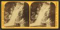 Glen Ellis Fall, by Styles, A. F. (Adin French), 1832-1910.png