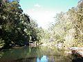 Glenbrook Creek, NSW.jpg