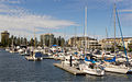 Glenelg marina South Australia.jpg