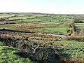 Glenhull Townland - geograph.org.uk - 1575838.jpg