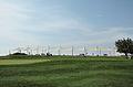 Golf fields 2799.jpg
