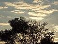 Grandes Rios - State of Paraná, Brazil - panoramio.jpg