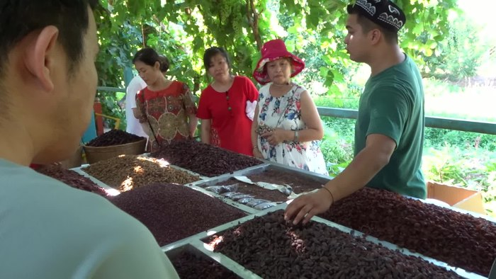 File:Grape farmer selling grapes in xinjiang.webm