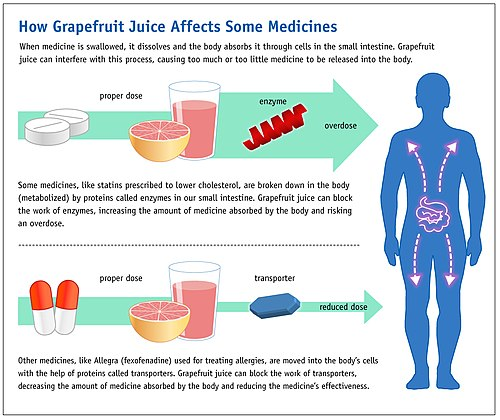 Grapefruit Drug Interactions Wikipedia