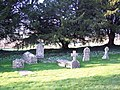 Gravestones and Snowdrops at St Margaret of Antioch, Chilmark - geograph.org.uk - 330894.jpg