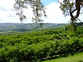 Green Hills - panoramio - Dawid Glawdzin.jpg