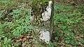 Grenzsteine im Wald zwischen Tauberbischofsheim und Großrinderfeld - 9.jpg