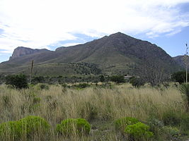Guadalupe Mountains National Park P1012848.jpg