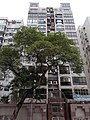 HK 九龍塘 Kln Tong 界限街 Boundary Street buildings June 2020 SS2 23.jpg
