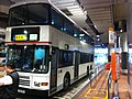 HK TST East Mody Road Bus Terminus parking driver training course Double-decker Nov-2012.JPG