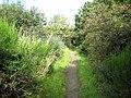 Hadrian's Wall National Trail near Port Carlisle - geograph.org.uk - 933211.jpg