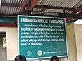 Hapao Rice Terraces(g).jpg