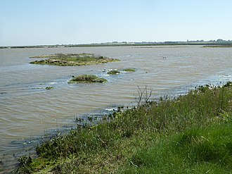 Suffolk Wildlife Trust - Hazlewood Marshes was a freshwater lagoon until a tidal surge broke through the sea wall and flooded the site with seawater.