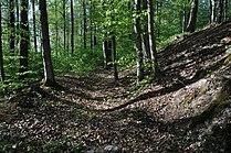 Heidenschloss-Weiherberg-DSC 6221.jpg