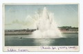 Highland Park, Fountain in Reservoir, Rochester, N. Y (NYPL b12647398-68390).tiff