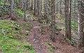 Hiking path in Saint-Jean-d'Aulps 02.jpg
