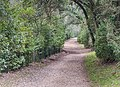 Hiking path near Pont du Gard.jpg
