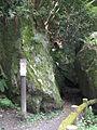 Himeiwa (Meiji no Mori Minō Quasi-National Park).jpg