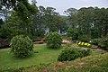 Hodges Gardens State Park 5.jpg