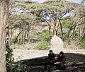 Homo erectus hand axe Daka Ethiopia.jpg