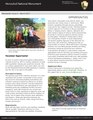 Honulili NM Newsletter-2.pdf