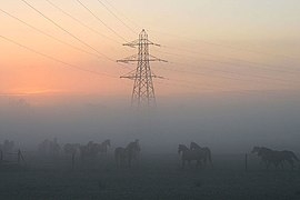 Horses and a pylon and a misty sunrise (geograph 2669890).jpg