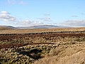 Horton Moor - geograph.org.uk - 497856.jpg
