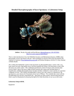 How to Take Macro Photographs of Insects USGS BIML Lab2.pdf
