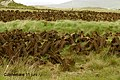IERLAND SCHOTLAND 2004 179 (5977833734).jpg