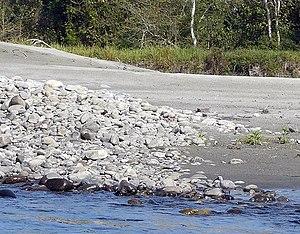 Nameri National Park - Nameri National Park