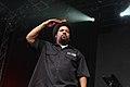 Ice Cube (6934067684).jpg