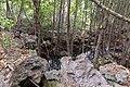 Impressions of Chumbe Island (2).jpg