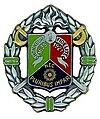 Insigne 1er régiment étranger de cavalerie.jpg
