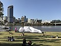 Installation at South Bank Parklands, Brisbane Festival 2017.jpg