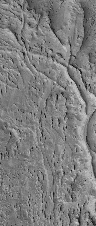 Inverted relief - Inverted channels on Mars.  These curved and crisscrossing ridges in the Aeolis region were once channels in a sediment fan.  The channels were more resistant to wind erosion than the surrounding materials, so now they are left standing as ridges rather than valleys. Illumination is from the left.