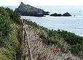 Iron railing, below Brownstone Battery, near Mewstone - geograph.org.uk - 1544549.jpg