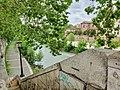 Isola Tiberina e Lungotevere de' Cenci (Roma) 27.jpg