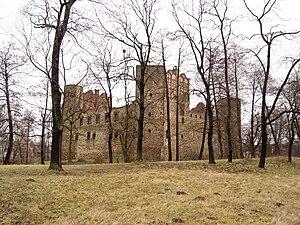 Drzewica - Castle