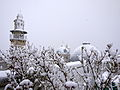 Jerusalem snow! (11337400924).jpg