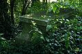 Jewish cemetery Grabow IMGP7442.jpg