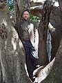 Jimbo-in-tree.JPG
