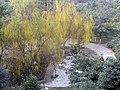 Jinsha Shangquan, Chengdu, Sichuan, China - panoramio.jpg