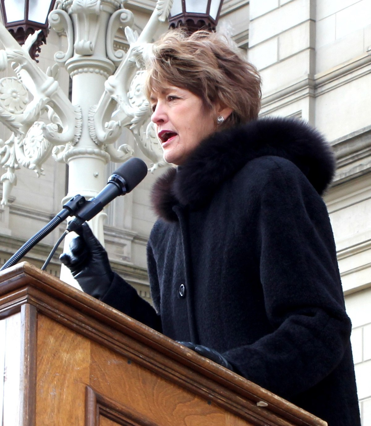 joan bauer  michigan politician