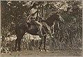 Joe Cooper, Melville Island 1912.jpg