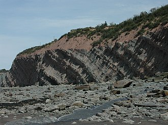 Joggins - View of the Joggins Fossil Cliffs