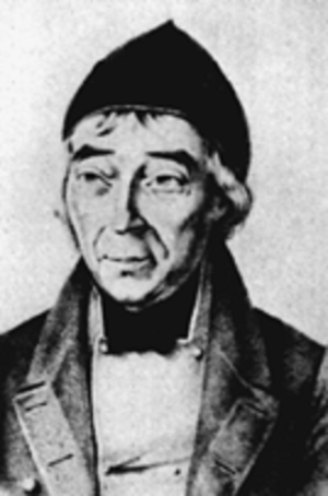 Johann Wilhelm Meigen - Johann Wilhelm Meigen