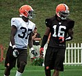 Johnson Bademosi and Josh Cribbs.jpg