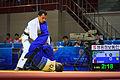 Judo (21778892918).jpg